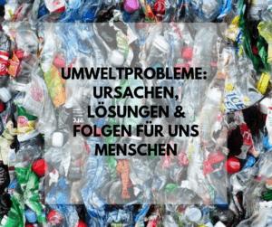 Umweltprobleme: Ursachen, Lösungen und Folgen für uns Menschen