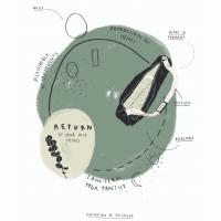 Kreislauf der hejhej-mats